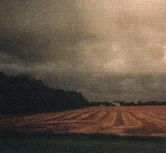 Storm in a field photo